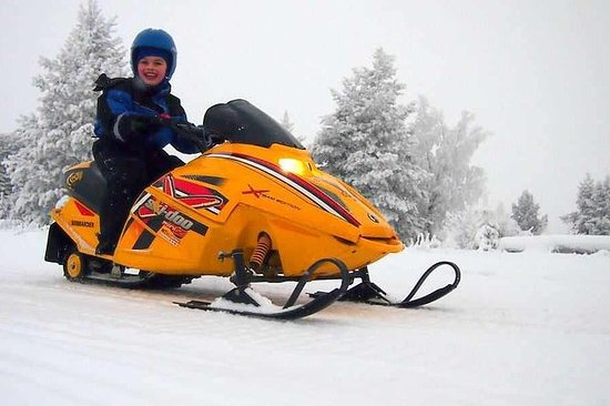Lapland Family Snowmobile Safari de...