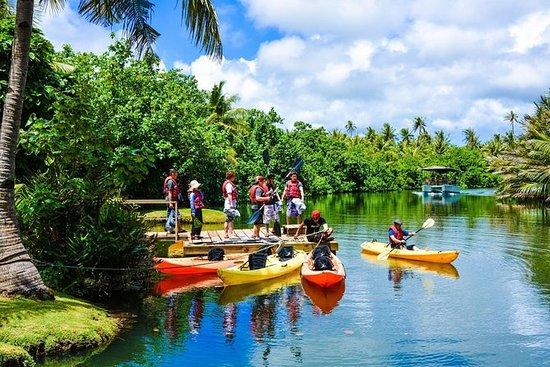 Aventura en kayak en grupo pequeño de...