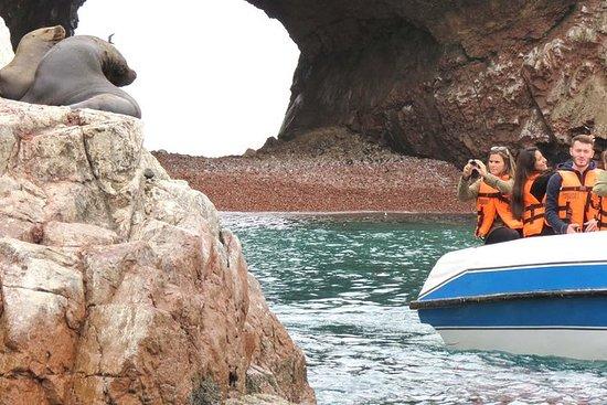 Excursión privada a las islas...