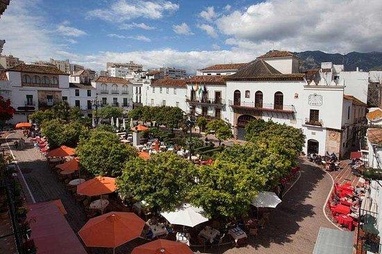 Tour privado a Marbella y Puerto...