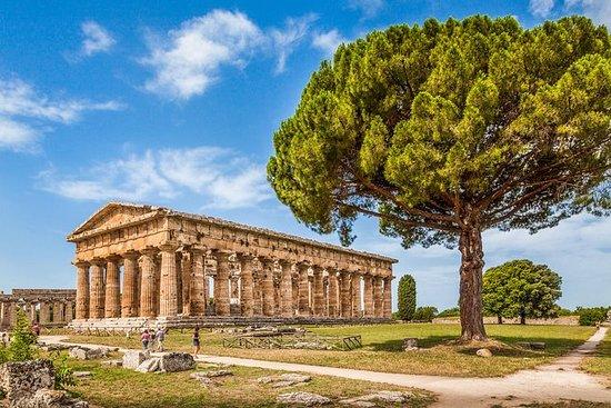PAESTUM: los Templos griegos y el...