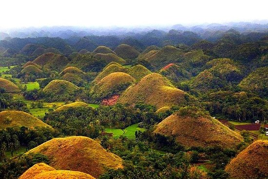 Visite d'avion Bohol Chocolate Hills