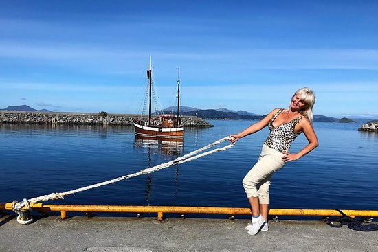 Excursión Ålesund: Visita turística...