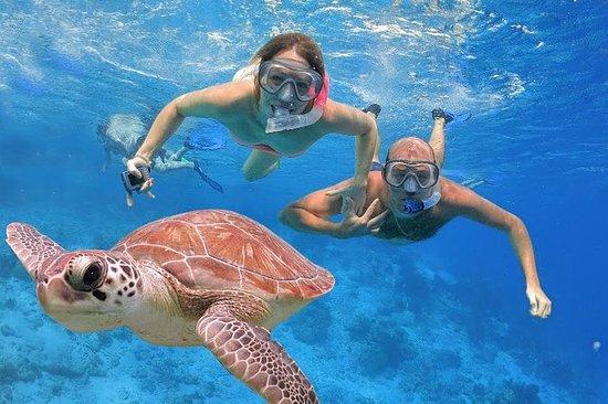Excursão Snorkeling Bali Nusa Dua