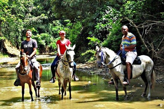 Ecoturismo Paseo a caballo en San...