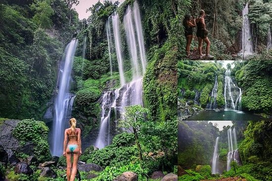 Private Tour: Best Waterfalls in Bali