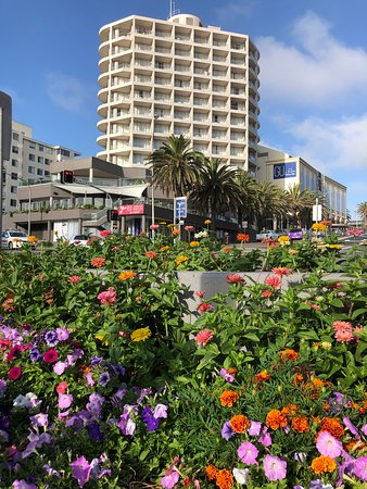 Photo taken from Park across the road using flowers as foreground