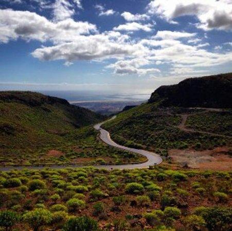 Canary Islands, Spain: Тенерифе