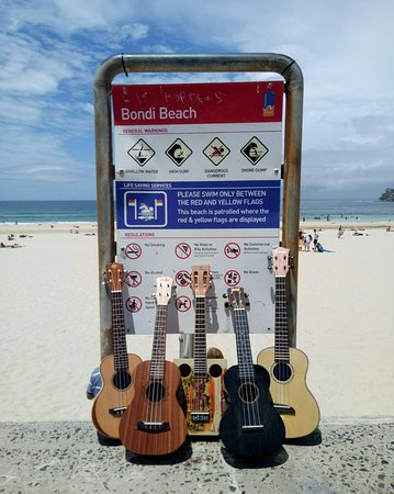 ‪Learn To Play Ukulele at Bondi Beach‬