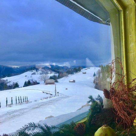 Moieciu de Jos, Romania: welcome treat