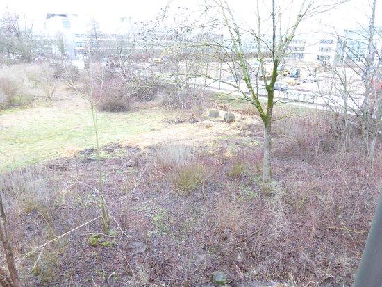 Hallbergmoos, Deutschland: Vom Zimmer nach draußen auf die Rückseite des Hotels