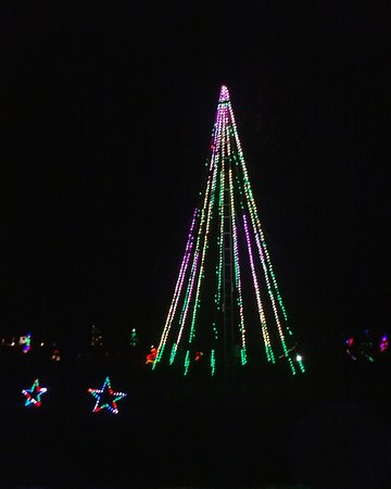 Lebanon, IL: Christmas tree that changes colors by the park's lake.