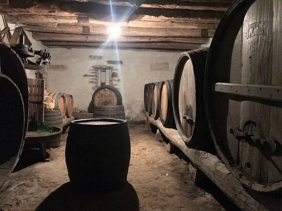 Dobrovo, Słowenia: More than 200 years old cellar wit a barel from1808