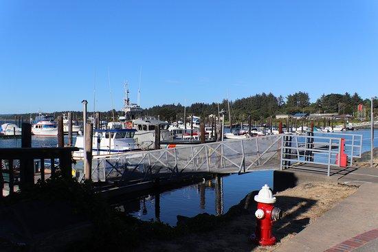 Port of Bandon