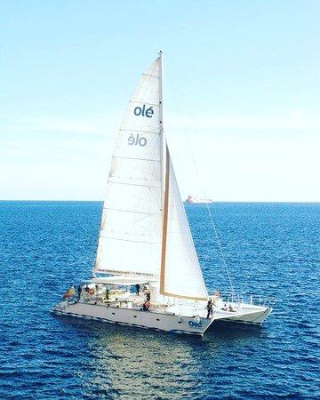 Catamaran Ole