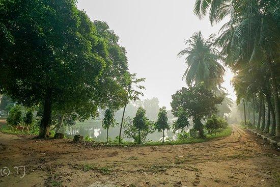 Natore Rajbari (also known as Pagla Raja's Palace, Natore Palace) was a prominent royal palace in Natore, Bangladesh