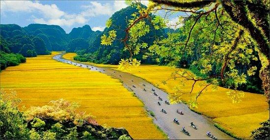 Tam Sinh Travel