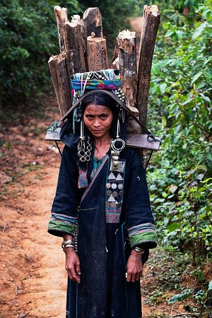 Phongsaly, Laos: Girl carrying wood along the trail.