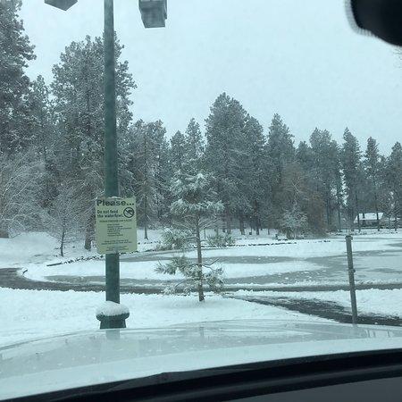 Parque Manito: Winter Wonderland!