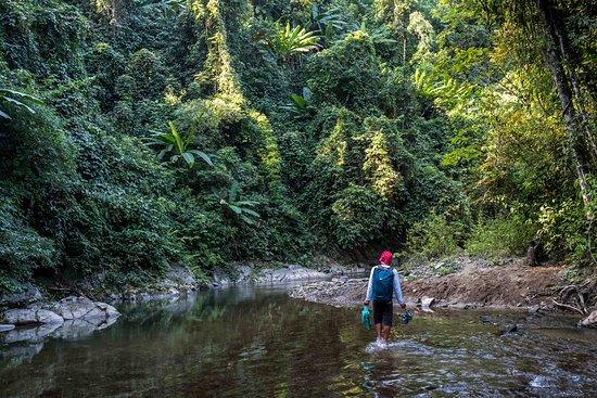 Phongsaly, Laos: Had to cross a stream 9 times.