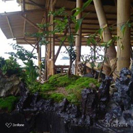 Wisata Villa Gardenia Lampung Cottage Reviews Pesawaran