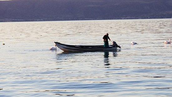 Lago de Chapala: Fisherman at Dawn off the Ajijic Malecon on Lake Chapala on Christmas Day