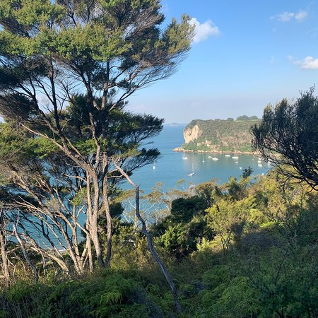 Whitianga Rock Walk
