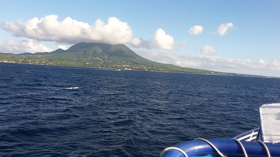 New Castle, Nevis: Picture of Nevis Island