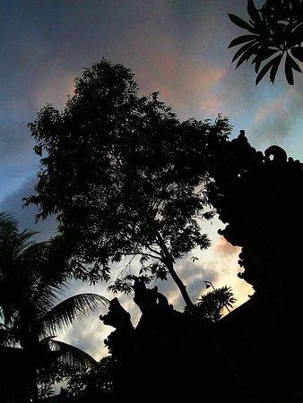 Pejeng, Indonesia: Tempat dimana disini, kami keluarga menghabiskan hari liburan. Tempatnya tenang dan sejuk