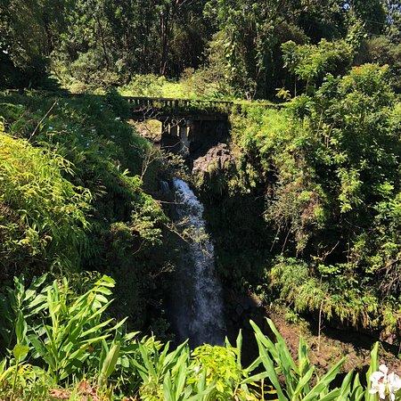 Falls on the road to Hana