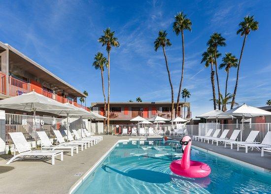 Pool - Picture of Skylark Hotel, Palm Springs - Tripadvisor