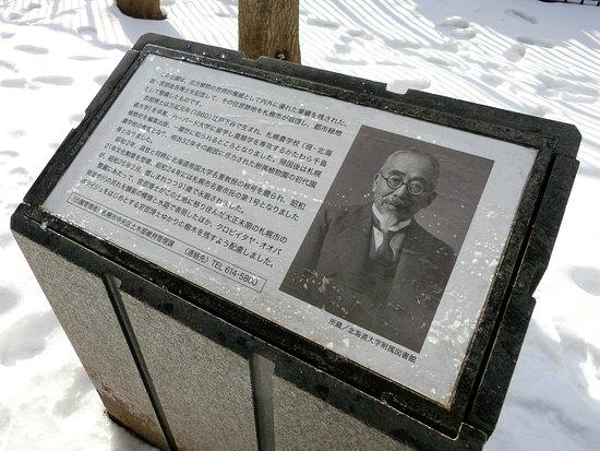 Miyabe Memorial Green