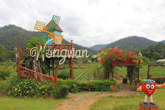 Wongwan Strawberry Farm