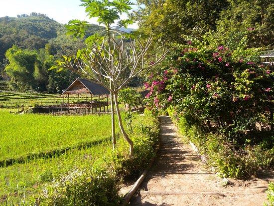 Provinz Luang Prabang, Laos: kamu lodge experience