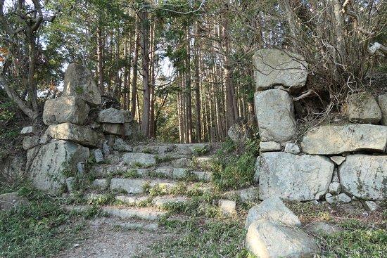 Omihachiman, اليابان: 平井丸の虎口