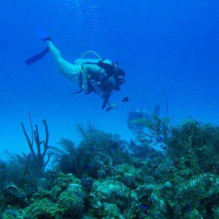Divers Team – fénykép