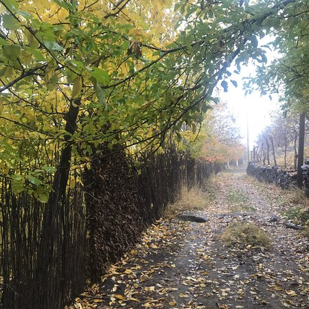 Hamedan Province, Irã: You can enjoy nature and food both in this beautiful city