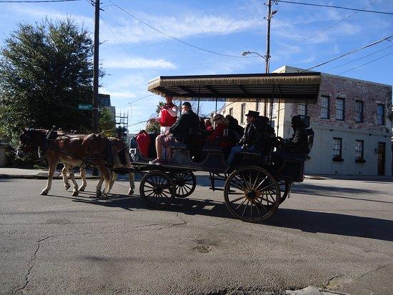 Carriage Ride In Charleston At Christmas Picture Of Charleston Coastal South Carolina Tripadvisor