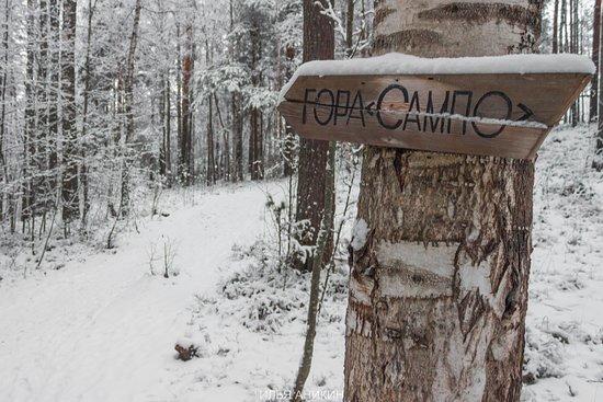 Kondopozhsky District, Russie: Указатель к горе Сампо.