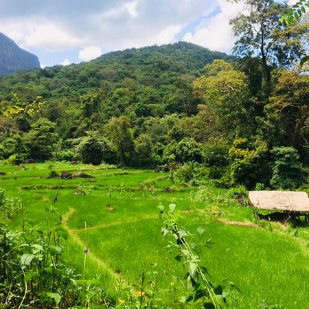 Meemure village. 61km from kandy town. Traveling by scooters and bikes. (Low cost) Traditional foods 😋😋 Fun activities and hiking 🥾
