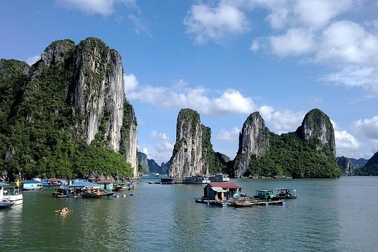Halong Bay Full-Day Trip