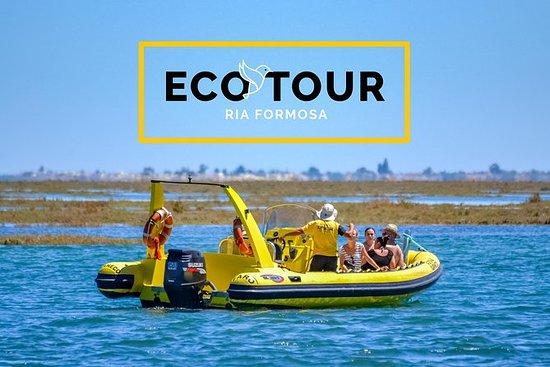 Eco Tour Ria Formosa - Guided Nature...