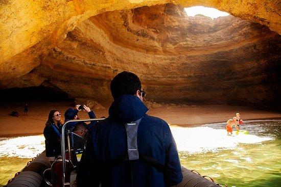 海豚和洞穴阿尔布费拉滨海