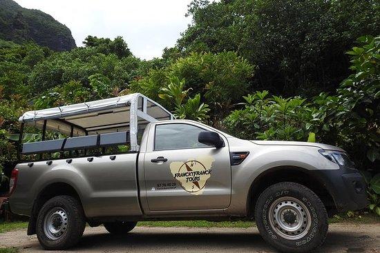 Tour privado: Moorea 4x4 Safari
