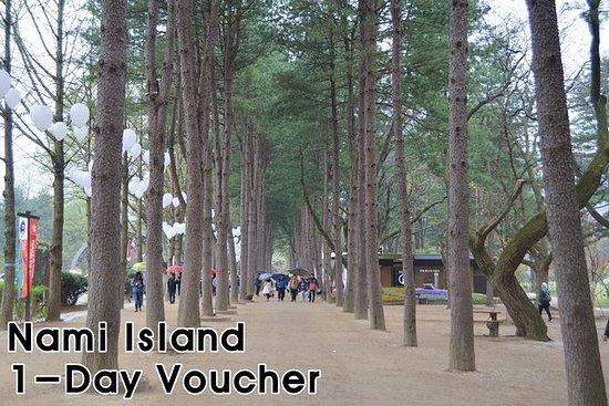 Nami Island Private Tour (maks 6...