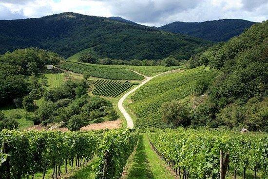 Prosecco Wijnreis met kleine groepen ...
