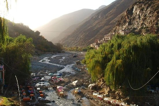 Day trip to Ourika valley and atlas...