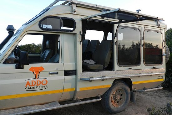 Addo Elephant Full Day Safari with a...