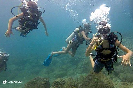 FunDive Catalina Islands (2 dives...
