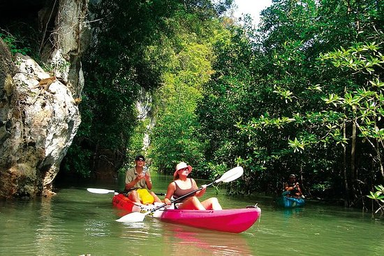 Tour de un día en kayak por Ban Bor...